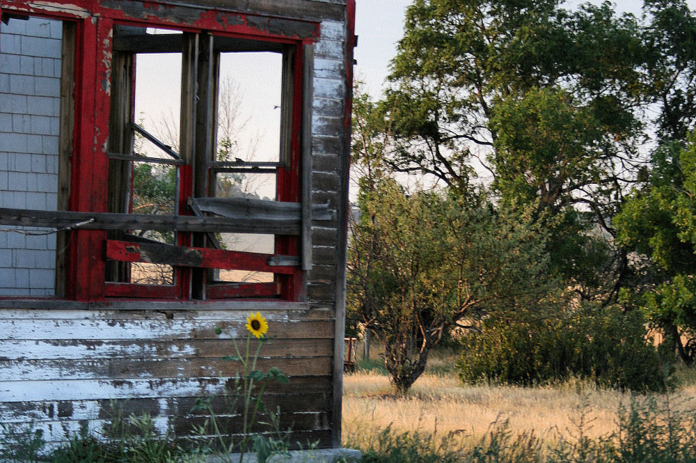 Abandoned farm house, Wyoming