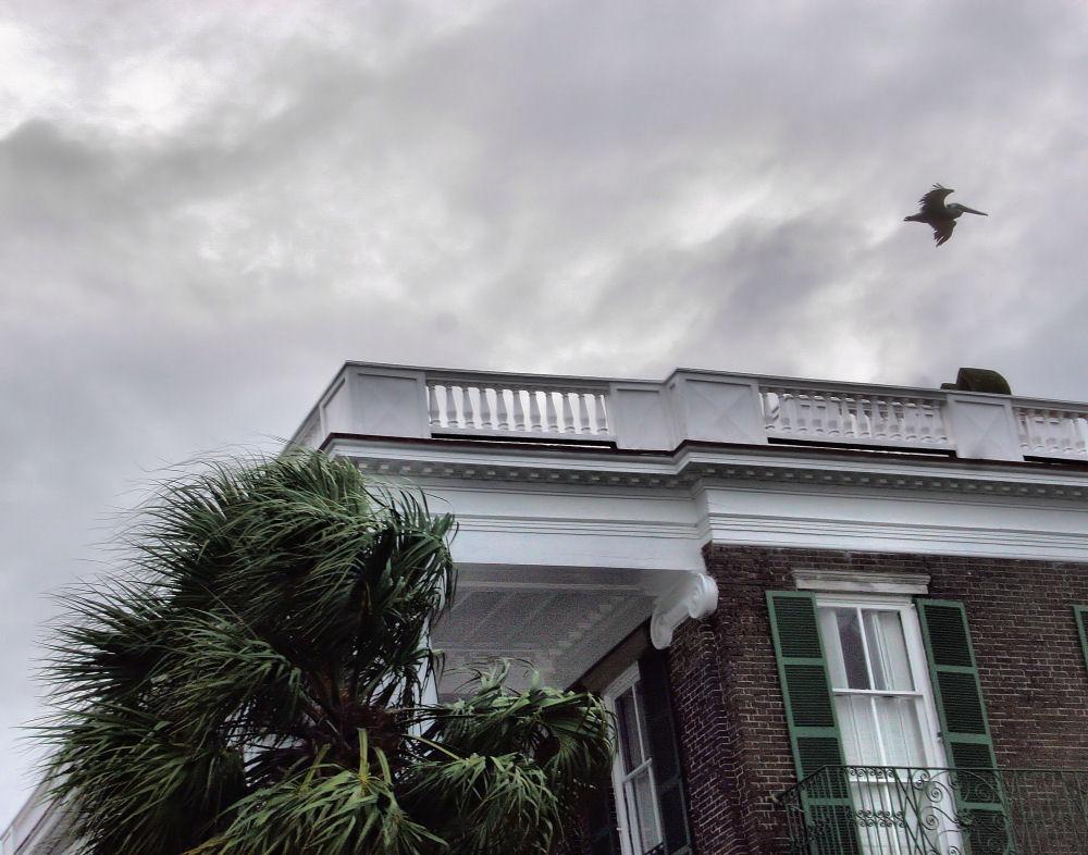 Charleston, South Carolina - impending Hurricane Gustav
