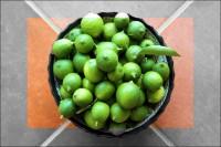 Freshly picked Lime