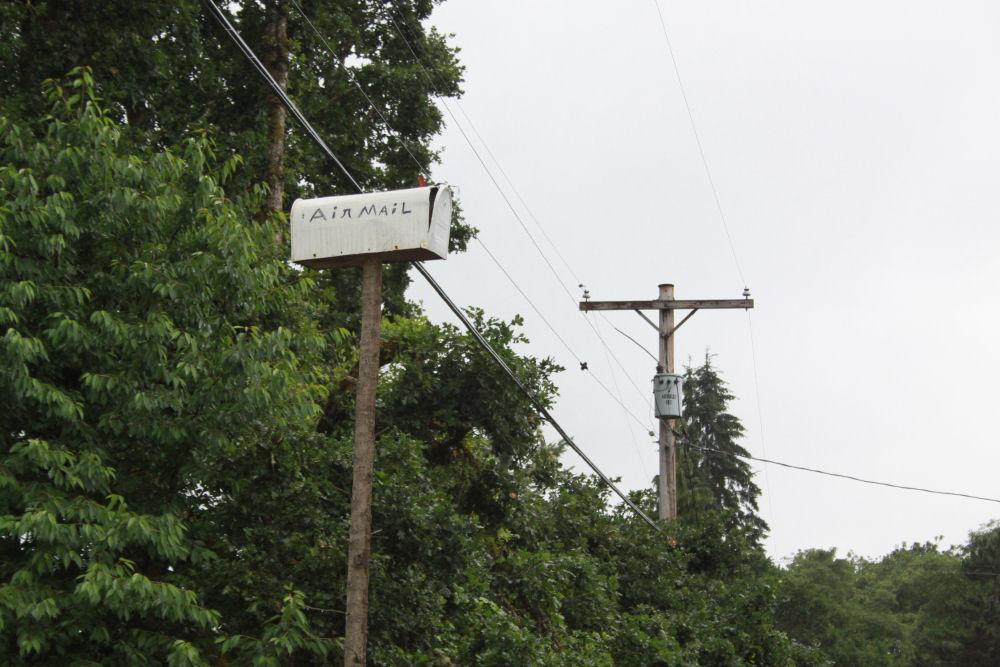 Gale Creek, OR Air Mail mailbox