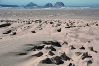 Oceanside, OR, USA beach: sand sculpted by water and wind