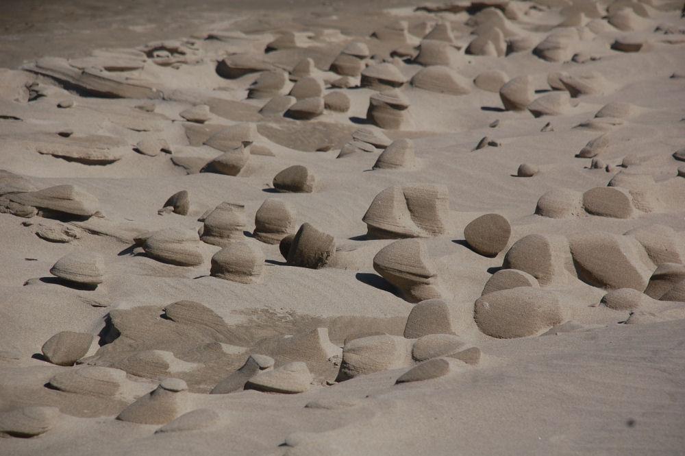Netarts Bay OR phenomena - Sand Sculptures