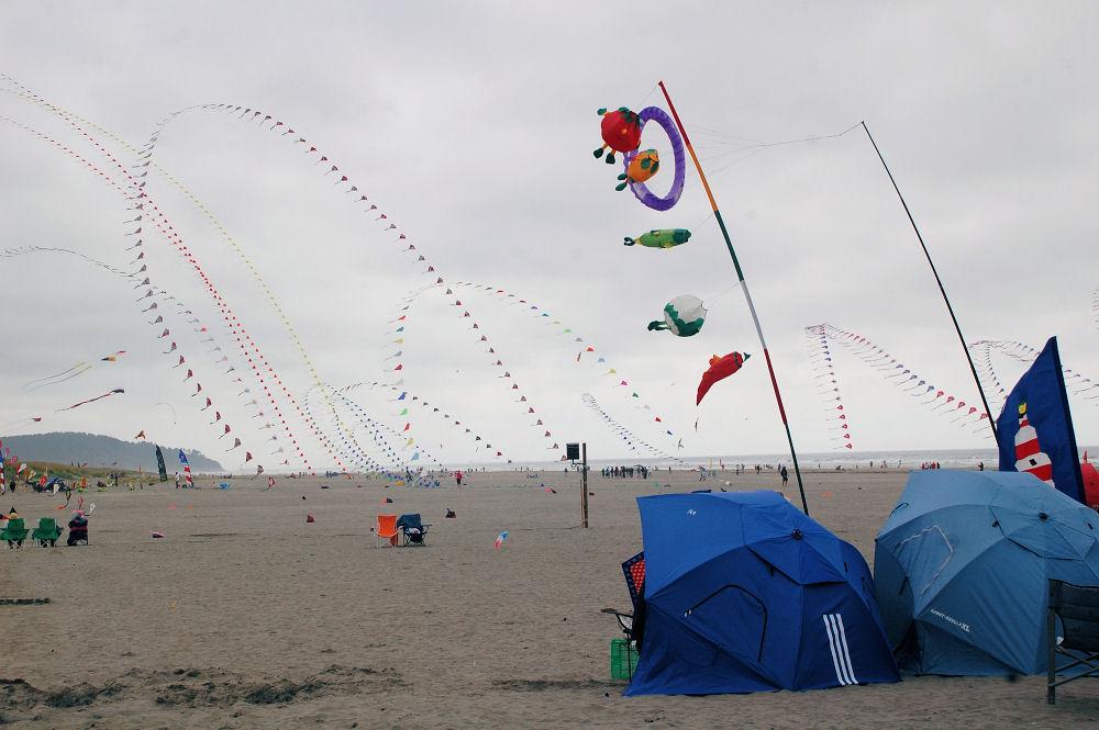 Long Beach, Washington Kite Festival