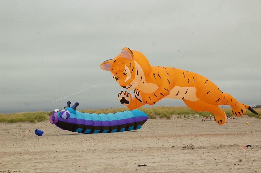 Huge tiger shaped kite, Long Beach, Washington Kite Festival