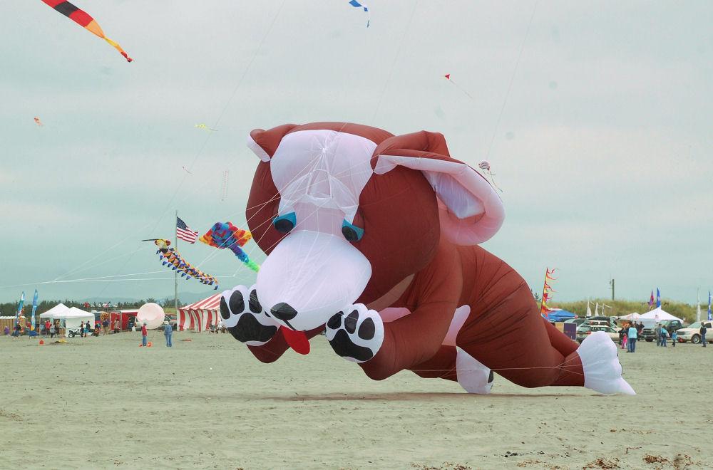 Huge dog kite, Long Beach, Washington Kite Festival