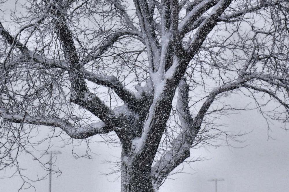 Syracuse NY blizzard