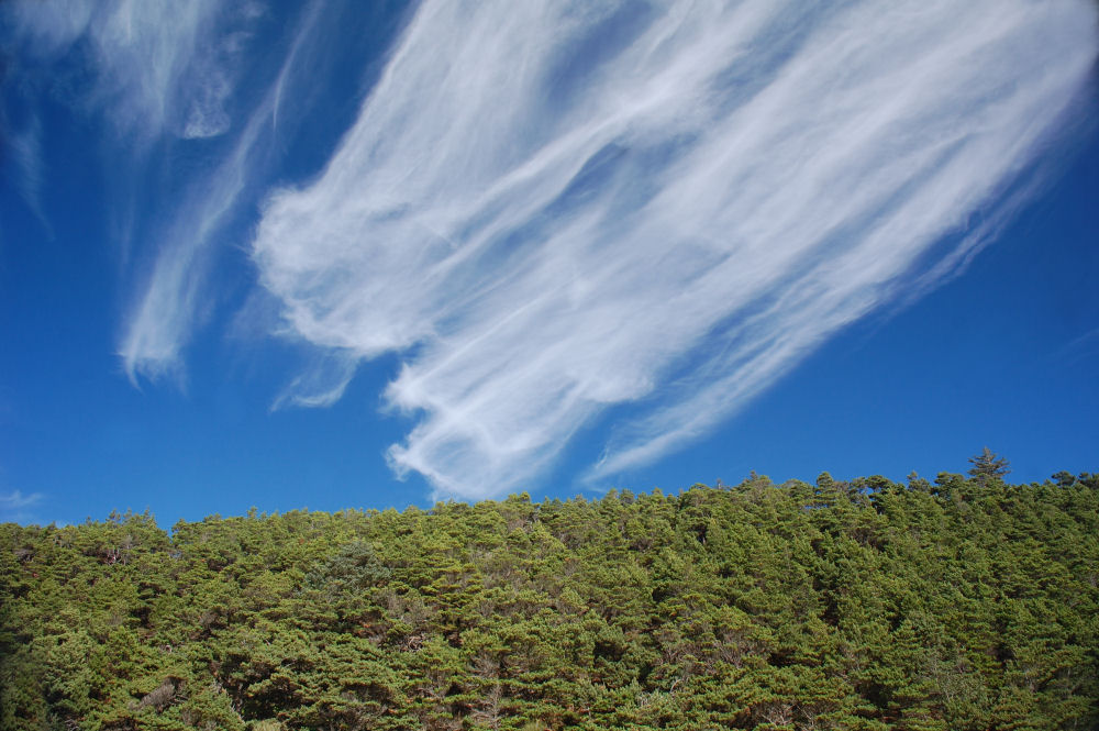 Amazing sky, Netarts Beach, Oregon