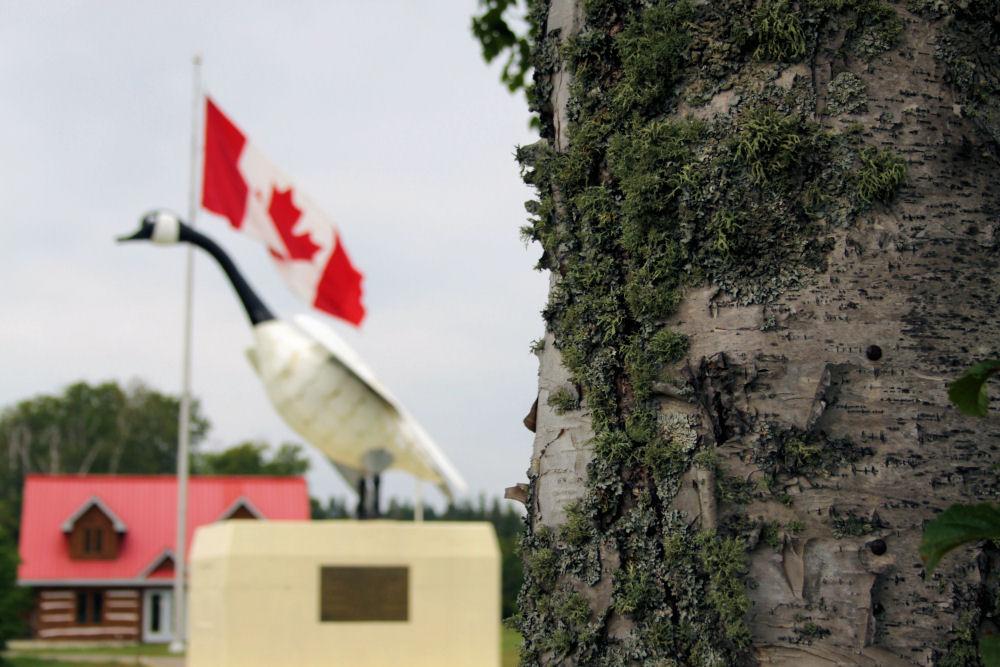 Wawa, ON - Canada Goose sculpture
