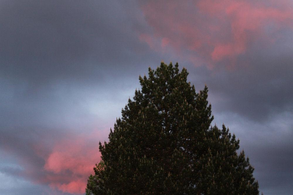 Sunset last night, Hillsboro, OR
