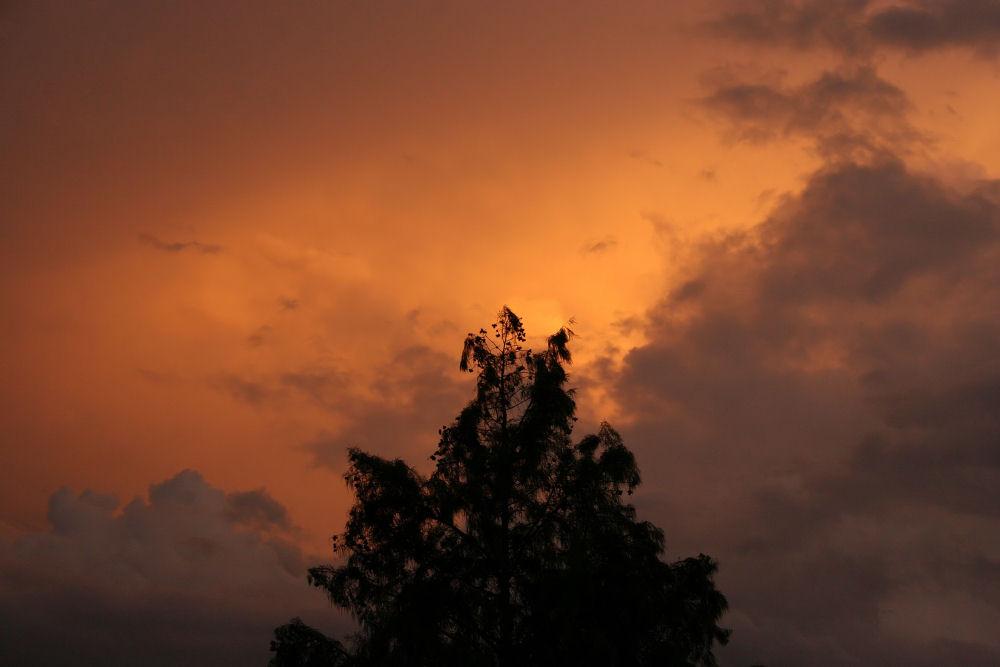 Neighborhood Cypress at sunset, Lewisville, TX