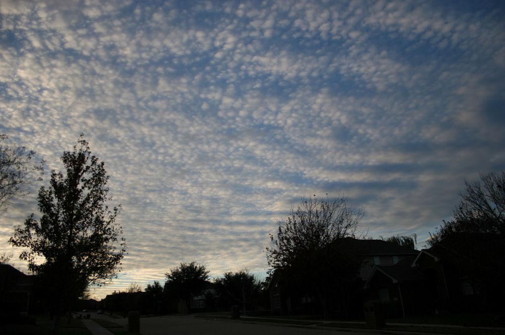 Mackeral sky, Dallas TX