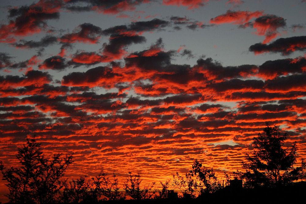 November sunrise - Mackerel Sky indicates cold weather ahead
