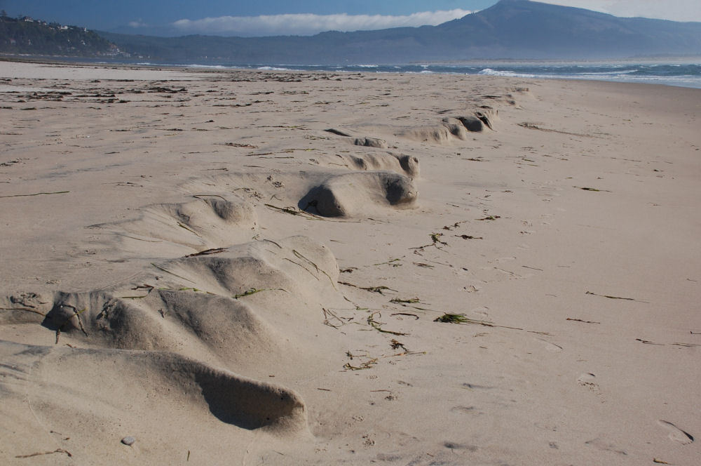 Unusual sand formations created by tide and wind, Oceanside beach, OR