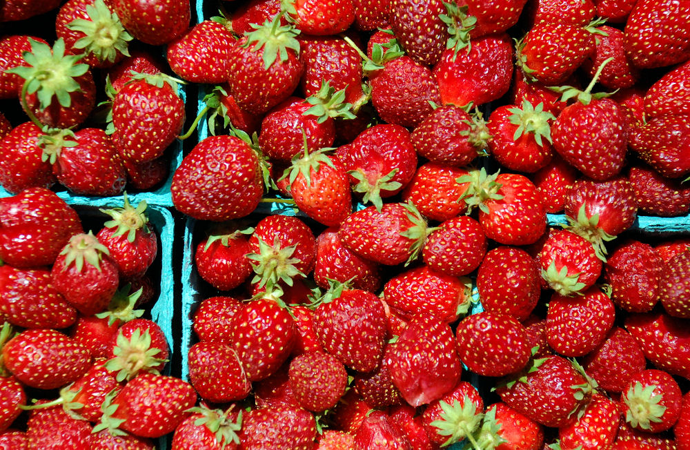 The infamous, sweet and juicy, but small, Hood Strawberries, available only in Oregon