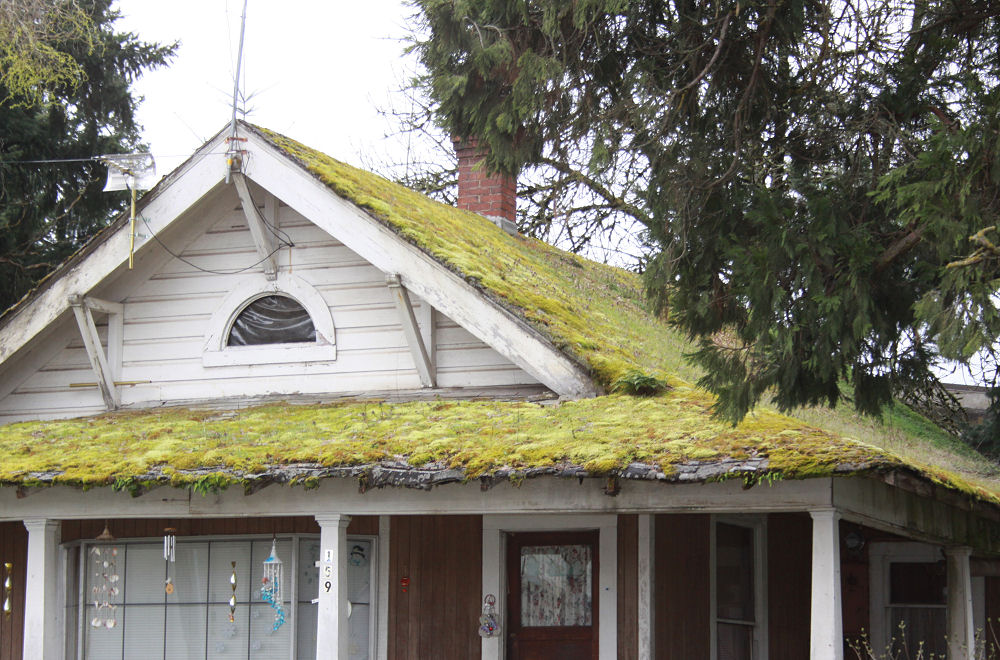 West coast roof, McMinnville, OR
