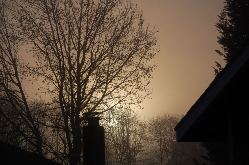 Fog rolling in as the sun set, our garage on the right and neighbor's chimney, left. Hillsboro OR