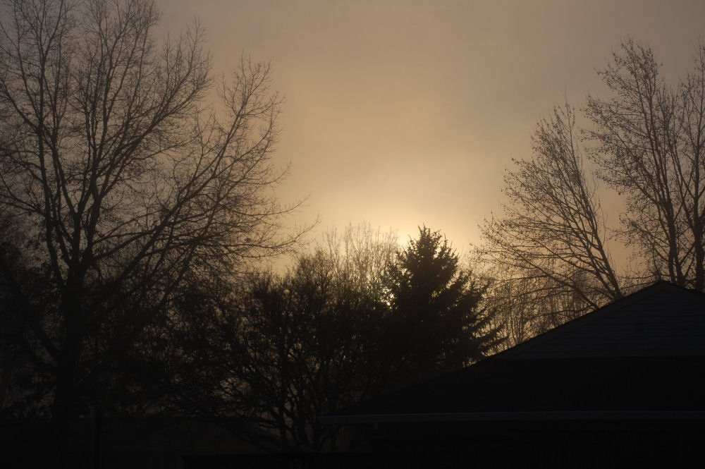Fog rolling in as the sun set, Hillsboro OR