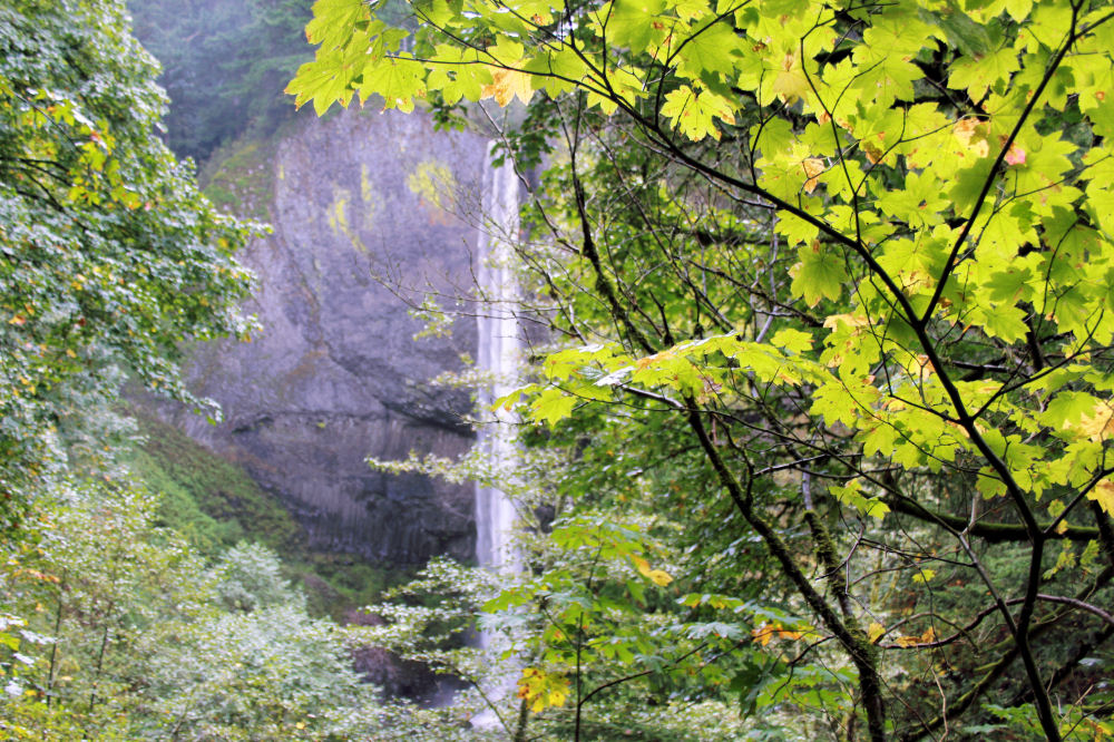 Latourell Falls, Old Hwy 30 by the Columbia River Gorge, Oregon