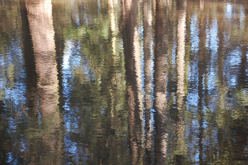 Reflections, Rood Bridge Park, Hillsboro