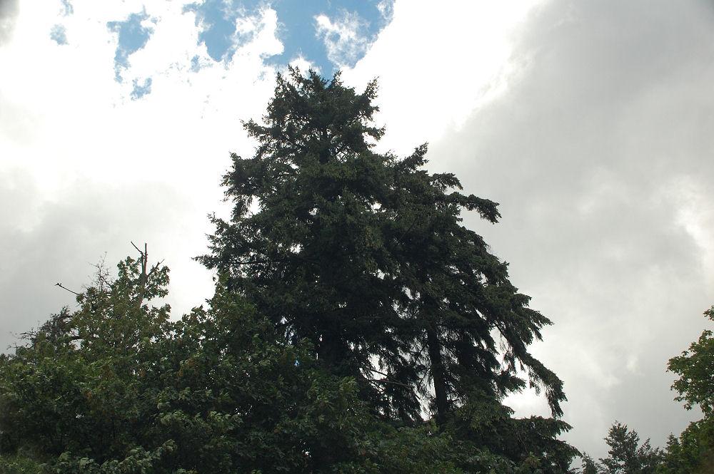 Hwy 84 stormy skies, Portland, OR