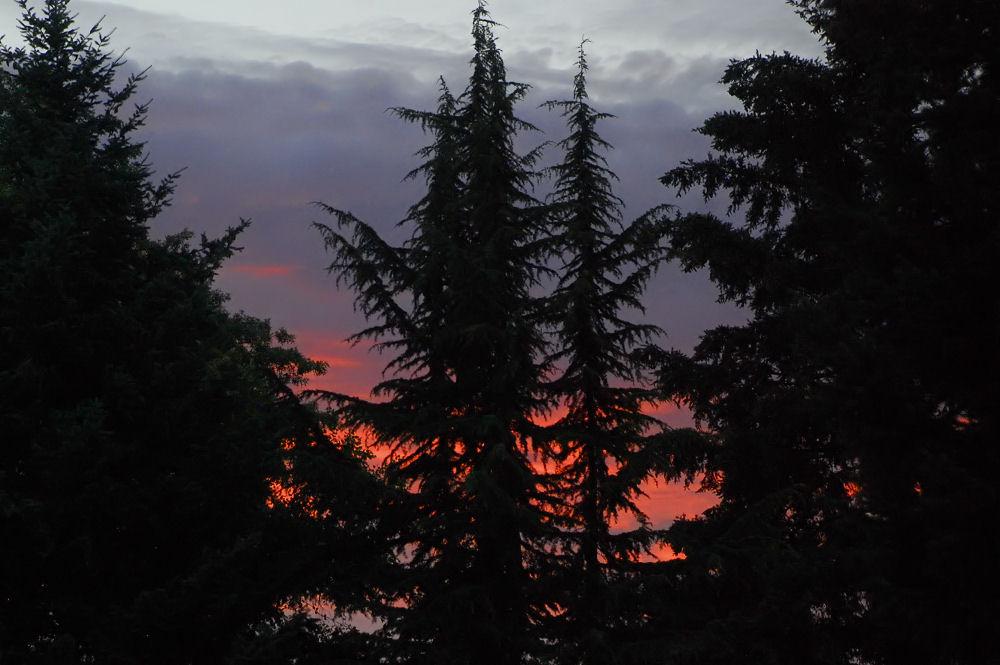 Sunset, Hillsboro, OR