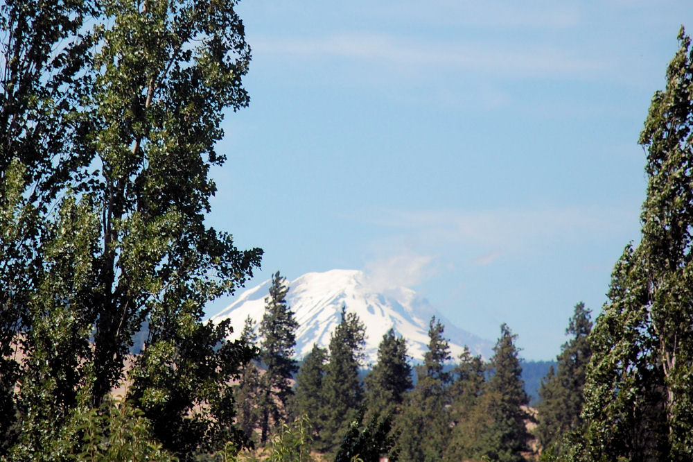 Mt. St. Helen's, WA as seen from the Fruit Loop near Mosier, OR