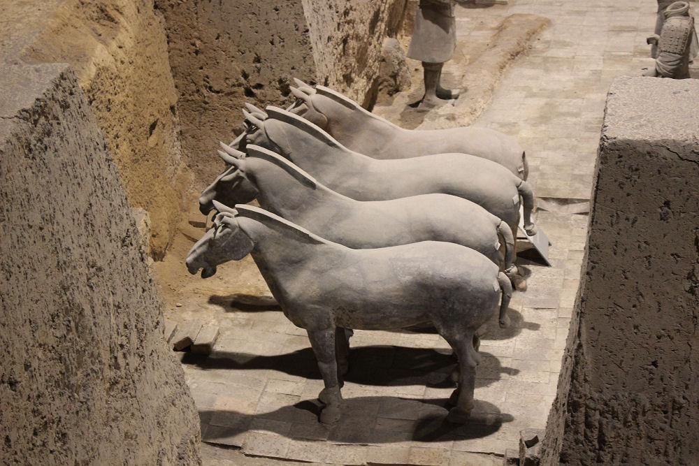 Terracotta Warrior's horses, Xi'an, China