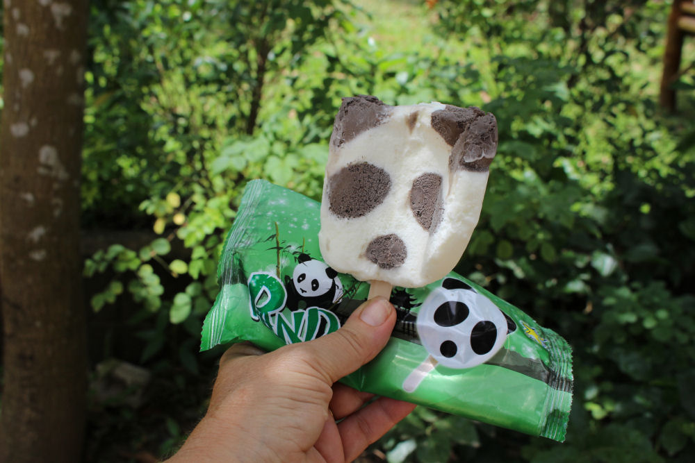 Panda popsicle at Buddha Park, Vientiane, Laos