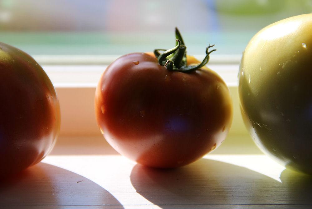 Tomato shadows