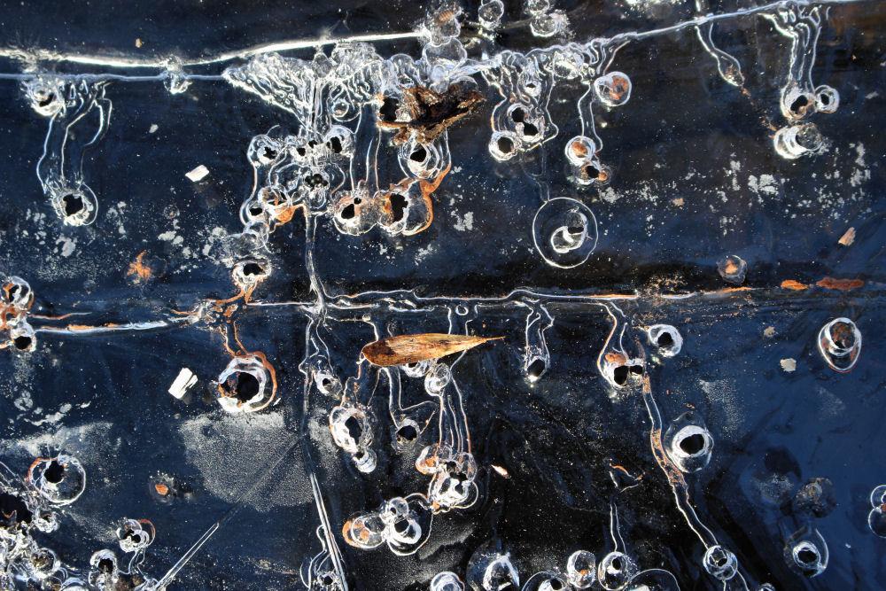 Ice art, Rood Bridge Park, Hillsboro OR