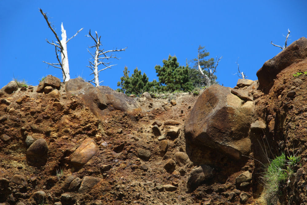 Rocky hillside, Oceanside, Oregon