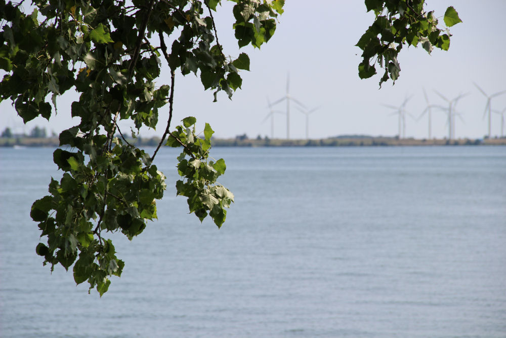 Wind turbines on Wolfe Island, seen from across Lake Ontario, Kingston ON Canada